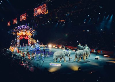 Circusartiest voor 1 dag